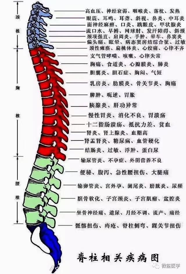 新郑龙湖修脊堂特色脊柱疼痛调理